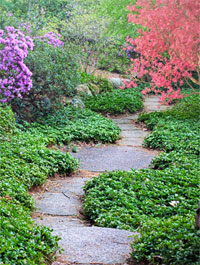 a pathway